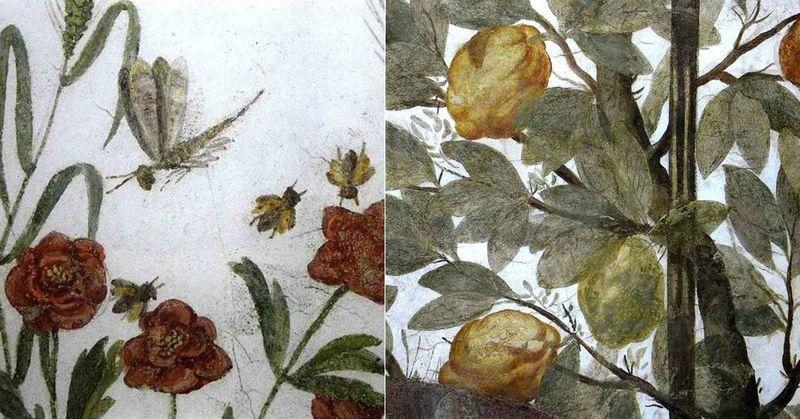 abeilles et citrons
