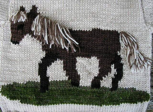 Pull cheval 2