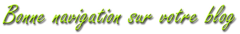 bonne_navigation_copie