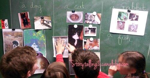 tableau avec photos des animaux eleves