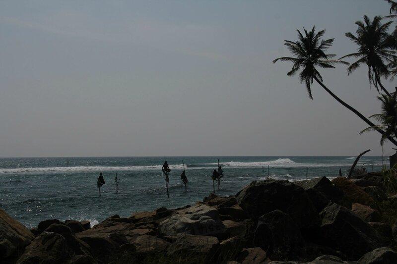 2015-02 Sri Lanka 0737_DxO