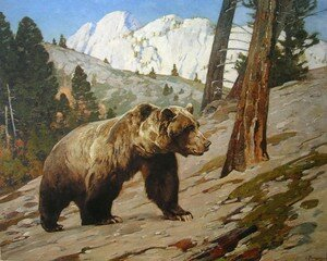 Silver_Tip_Grizzly_Bear__Carl_Rungins