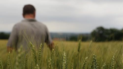 Info MSA Prévention du suicide des populations agricoles : bilan 2015