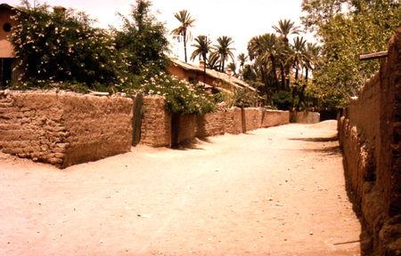 marrakechgrenadier