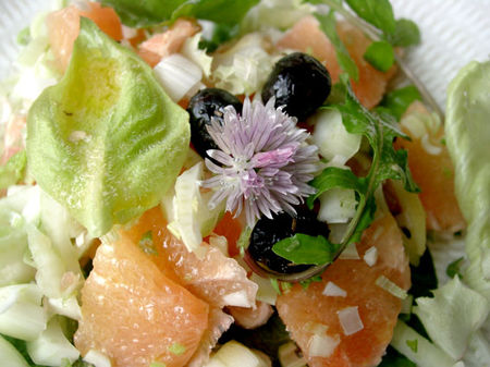 salade_fenouil_pomelo