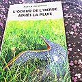 L'odeur de l'herbe après la pluie de patrick jacquemin, 2015