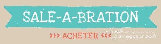 demoHeader_SAB_Shop_demo_Dec0113_FRaacheter