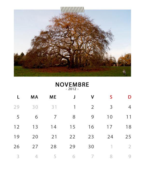 11_sc_cdcasecalendar2012_november
