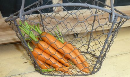 15-carottes
