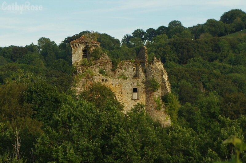 && château de Branzac (10)
