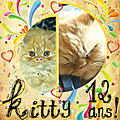Kitty a 12 ans !