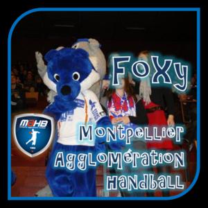 D1 Montpellier Foxy