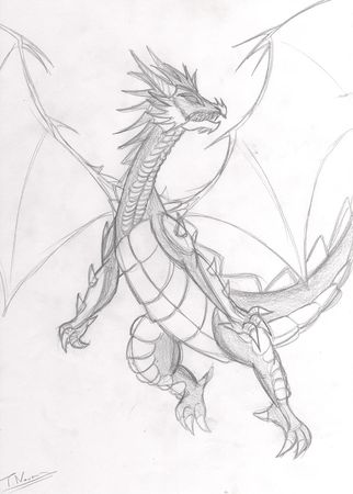 Dragon_9
