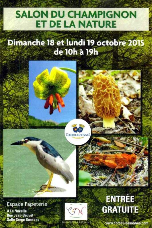 Affiche Cnce expo