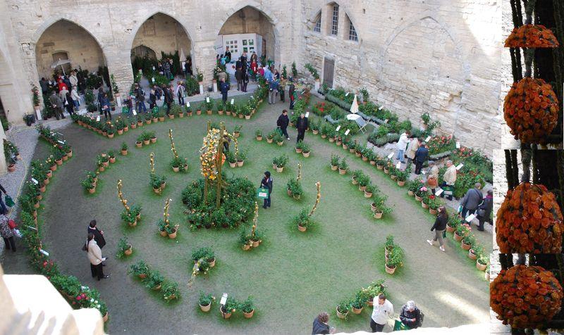 Visite dans un jardin d 39 eden de fil en pinceaux for Jardin a visiter 78