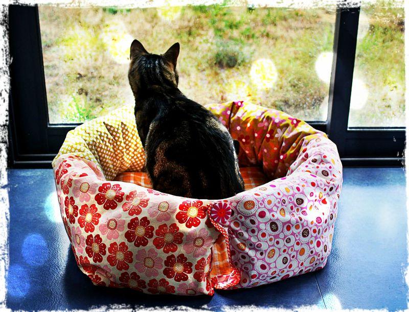 Panier Fleur Pour Chat : Tuto nid douillet pour minou ou petit toutou brenda et
