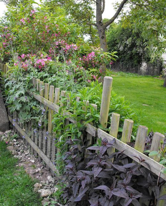 barri re de l 39 enclos des canards photo de mon jardin le jardin secret de lilibeth. Black Bedroom Furniture Sets. Home Design Ideas