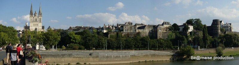 Cathédrale Saint-Maurice et château vue du pont de Verdun