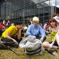 Groupe Cosplay One piece 6