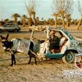 Cabriolet sport (Maroc)