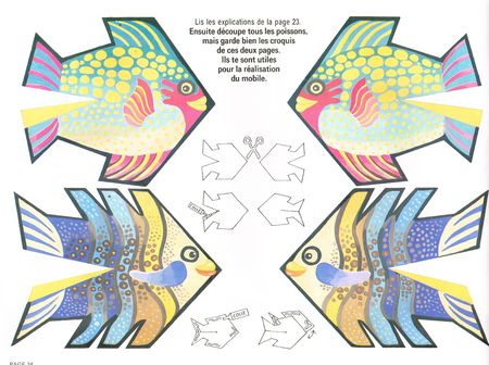 poisson du jour 3