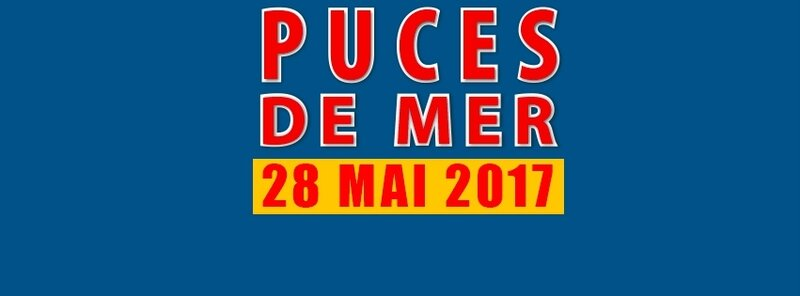 puces_marines_2017