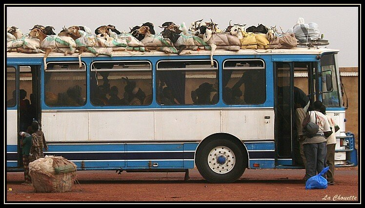 Mali_transport_en_commun