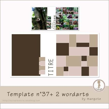 preview_template_n_37_by_margote