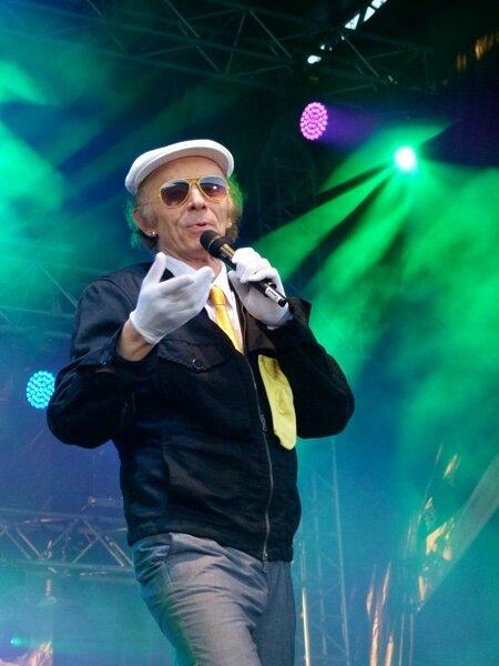 Photo-Laroche-Valmont-personnes-au-concert-stars-80