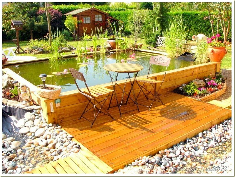 Le bassin...Mon petit coin de paradis (3)