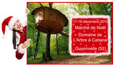 photo_facebook_et_blog_marche_de_noel