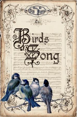 birds_song1