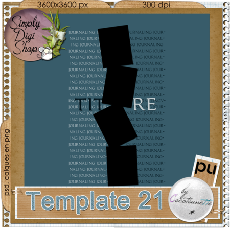 CN_Template21_Preview