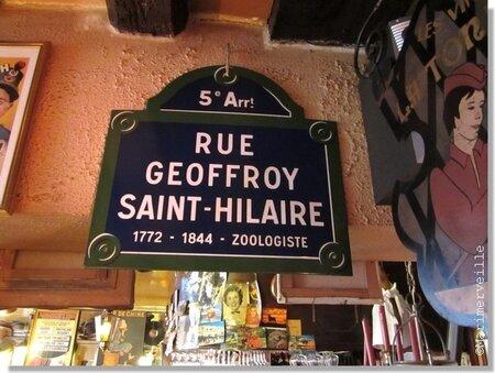 geoffroy_Saint_Hilaire