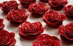 Rose résine
