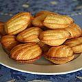 madeleines_au_yaourt
