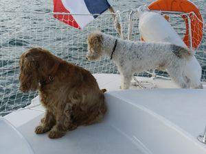 prise en main du bateau 033