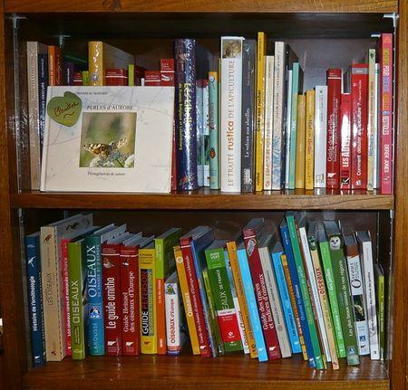 librairie-coiffard-nantes