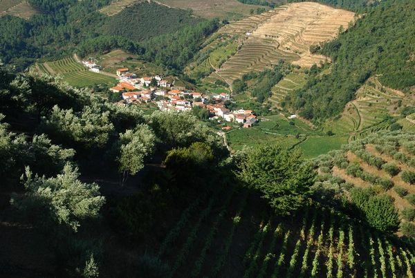 Douro_7