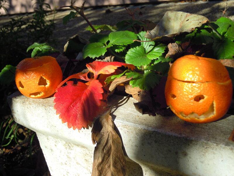 halloween_046
