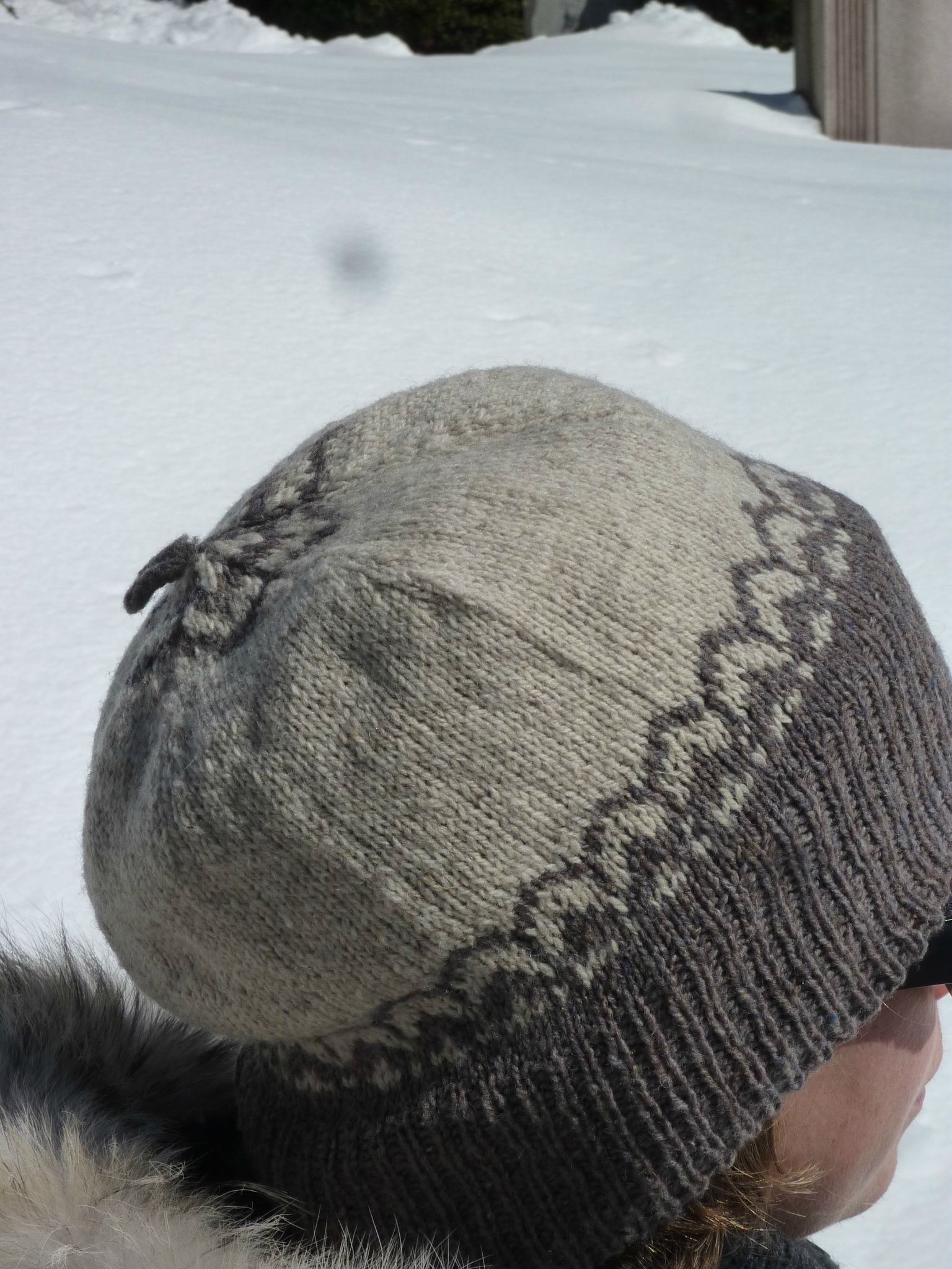 Altair Cap/Broklyn Tweed