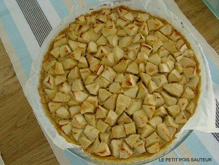 Tarte_aux_pommes_et_aux_fruits_secs_1