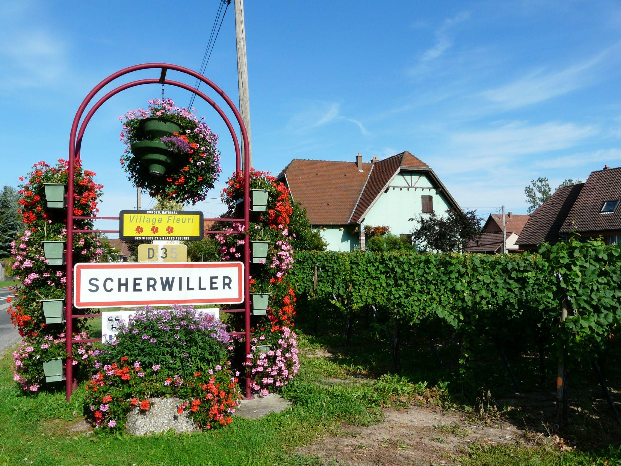 Scherwiller (2)