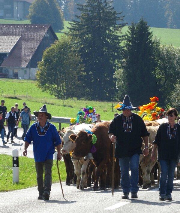 Désalpe troupeau éleveurs