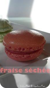 macaron_fraise_s_ch_e_010309