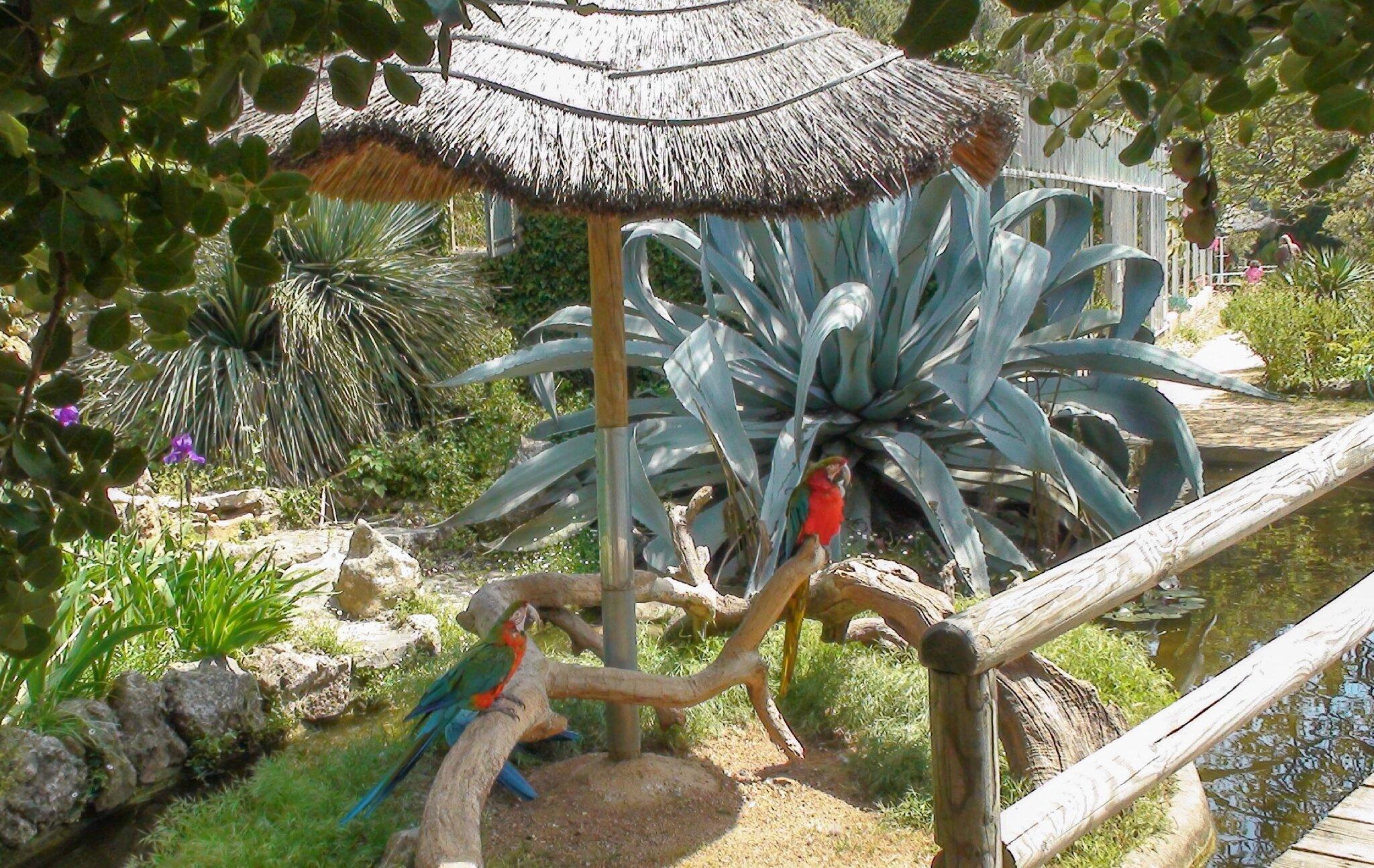 Sanary-sur-Mer (Zoo)