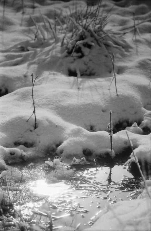 N 2002-02 Vacances de neiges aux Rousses (février ou mars 2001) 05