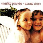 1993 SIAMESE DREAM