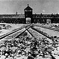 1941 - la pologne et ses juifs