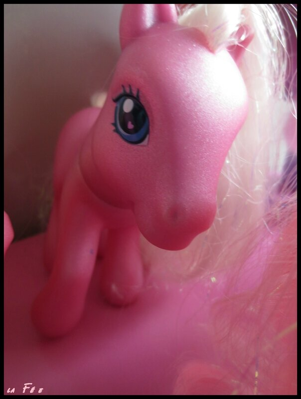 collection petit poney (8)